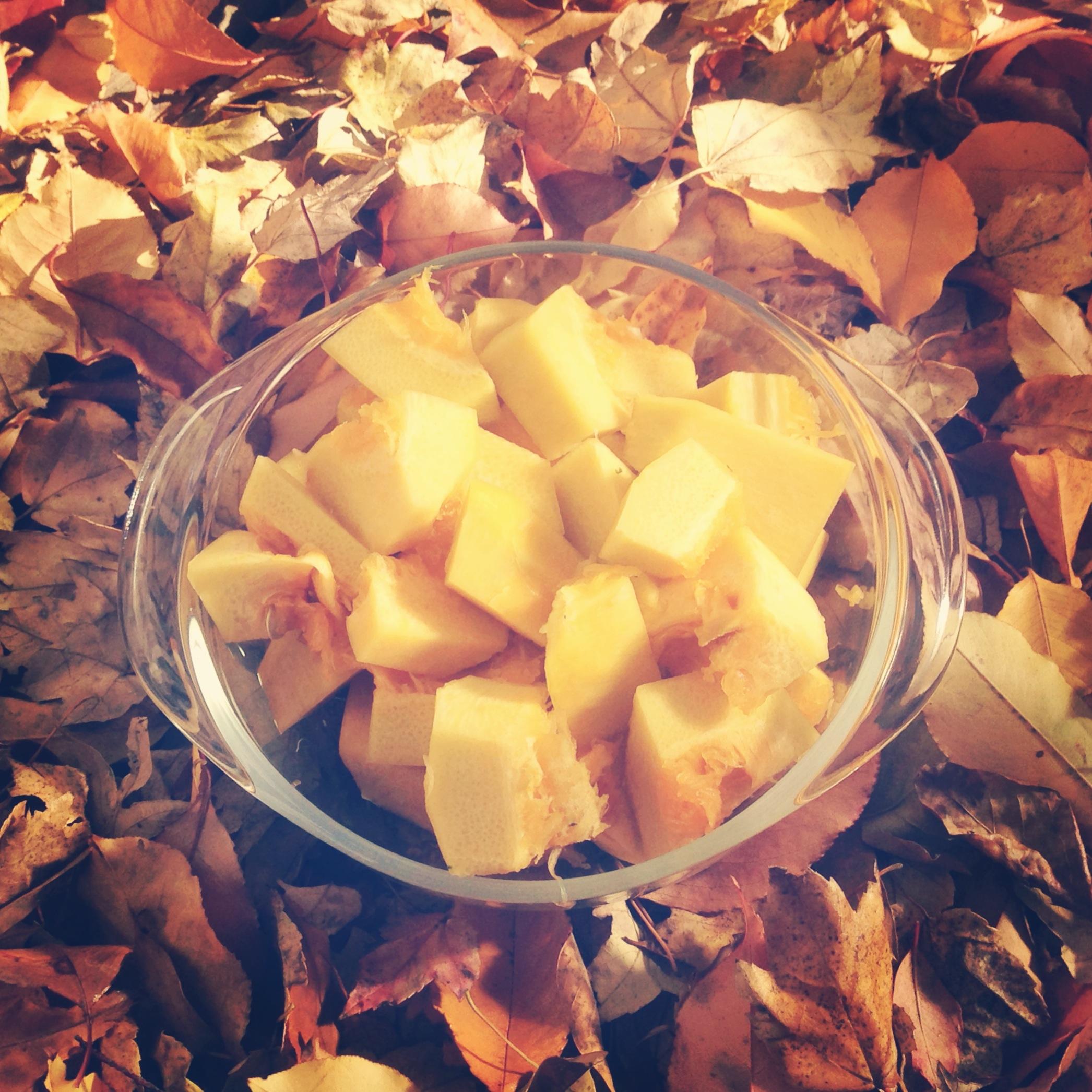 smm_recipe_wintersquash